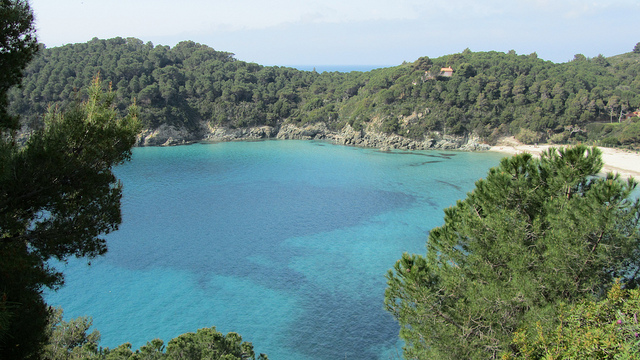 Spiagge all'Isola d'Elba
